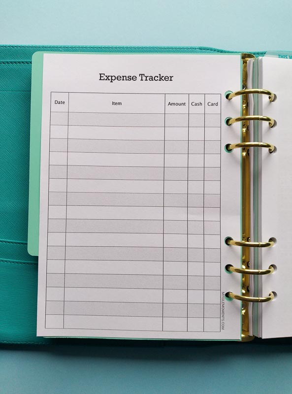 Full page view of Expense Tracker in A5 ring binder