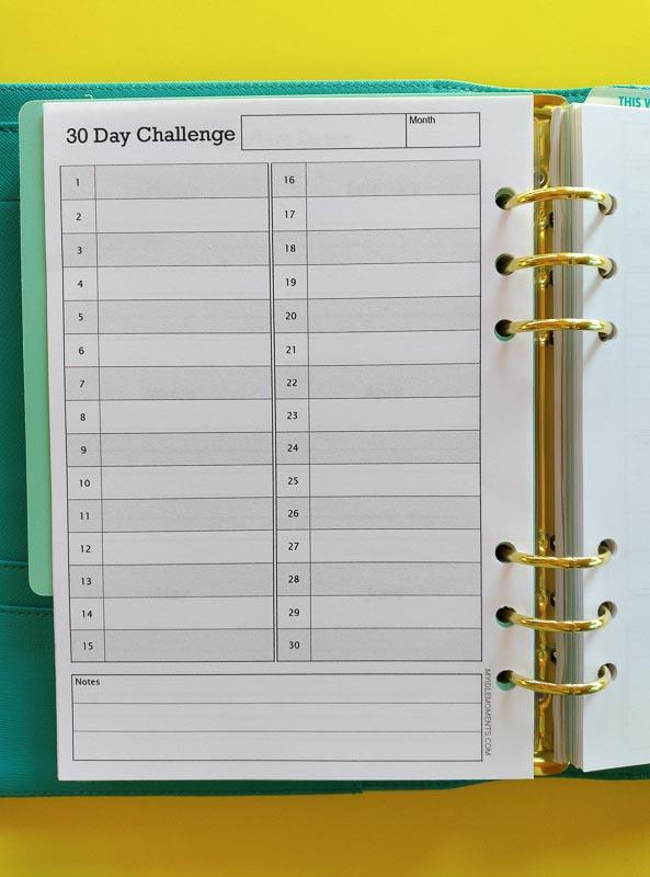 30 day challenge A5 printable