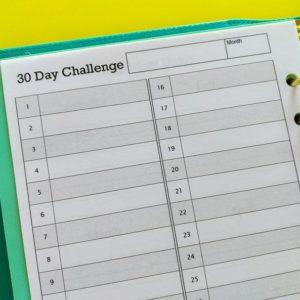 30 day challenge Insert